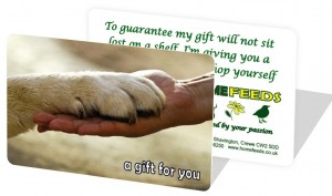 Gift Card Dog